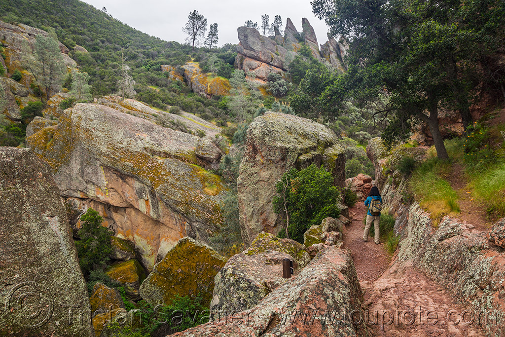 rim trail - pinnacles national park (california), hiking, pinnacles national park, rock formations, sharon, trail, woman