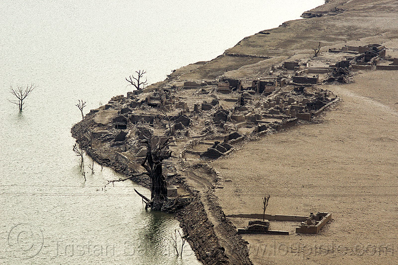 ruins of submerged village - tehri dam reservoir (india), artificial lake, bhilangna valley, dead trees, reservoir, ruins, tehri lake, village, water