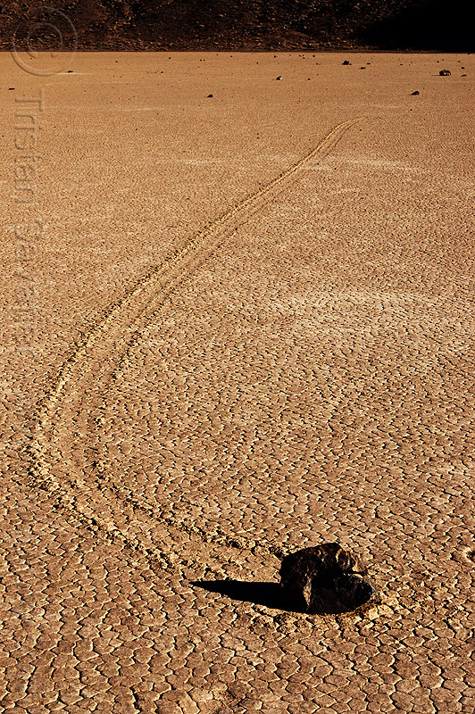 sailing stone curved track on the racetrack - death valley, cracked mud, death valley, desert, dry lake, dry mud, racetrack playa, sailing stone, sliding rock, track