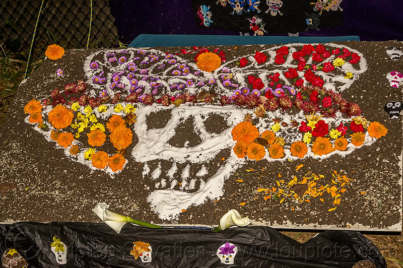 salt drawing of decorated skull - dia de los muertos (san francisco), altar de muertos, day of the dead, decorated skull, dia de los muertos, drawing, halloween, memorial, night, orange flowers, orange marigold, salt