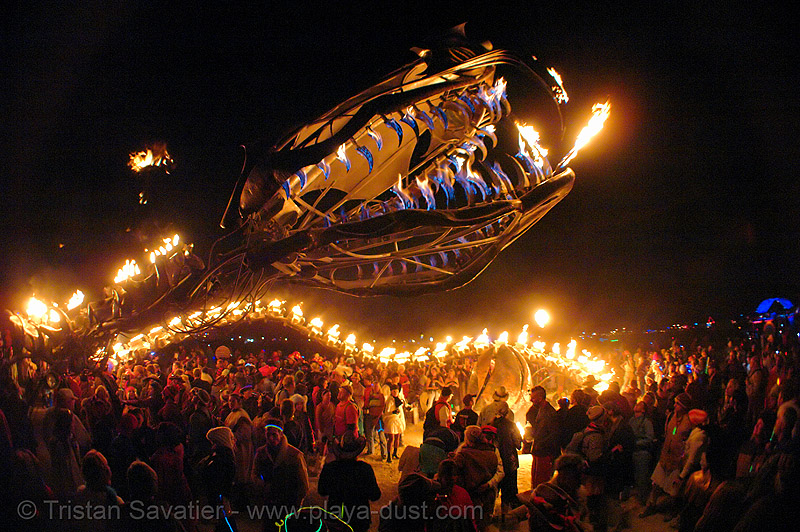 serpent mother - giant snake skeleton fire sculpture - head - burning-man 2006, art installation, burning man, fire, flames, flaming lotus girls, giant, night, sculpture, serpent mother, skeleton, snake