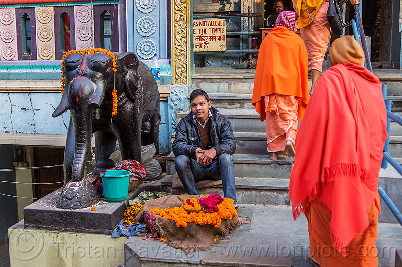 shankar viman mandapam - temple entrance in daraganj, bhagwa, black elephant, daraganj, elephant sculpture, flower offerings, hindu pilgrimage, hindu temple, hinduism, india, maha kumbh mela, man, marigold flowers, saffron color, sitting, steps