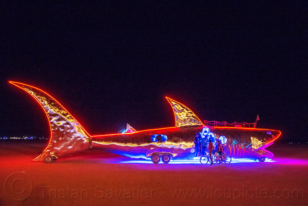 shark art car at night - burning man 2016, burning man, fish, glowing, night, shark art car