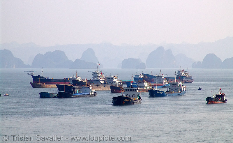 ships mooring in halong bay - vietnam, boats, halong bay, mooring, sea, ships
