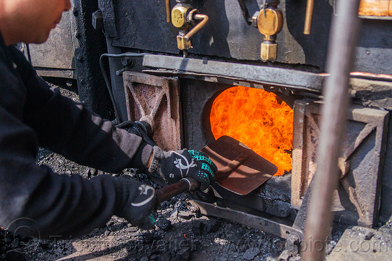 shoveling coal in steam locomotive furnace - darjeeling (india), boiler, burning, cab, coal, darjeeling himalayan railway, darjeeling toy train, fire, flames, furnace, man, narrow gauge, railroad, shoveling, steam engine, steam locomotive, steam train engine, worker