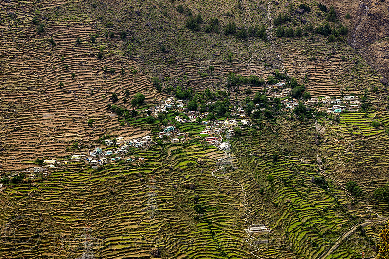 small village on terraced fields (india), agriculture, houses, india, mountains, terrace farming, terraced fields, village