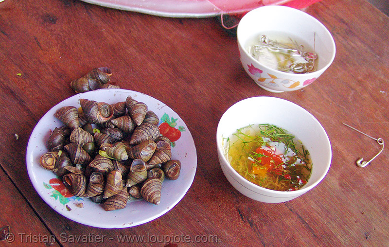 snail snack - vietnam, cat ba, cat ba island, cát bà, delicacy, dishes, food, plate, safety pins, snails
