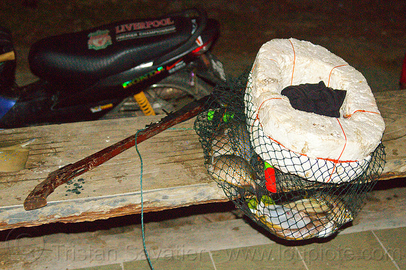 speargun and fisherman's catch in floating net, fish hunting, fishes, kelambu beach, night, snorkeling, speargun, stryrofoam