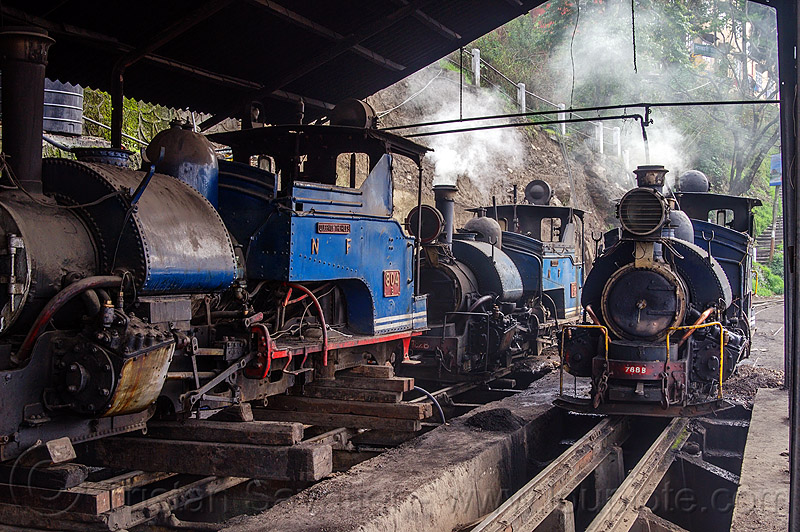 steam locomotives - darjeeling train yard (india), 782 mountaineer, 788 tusker, 804 queen of the hills, darjeeling himalayan railway, darjeeling toy train, narrow gauge, railroad tracks, rails, smoke, smoking, steam engine, steam locomotive, steam train engine, train depot, train yard