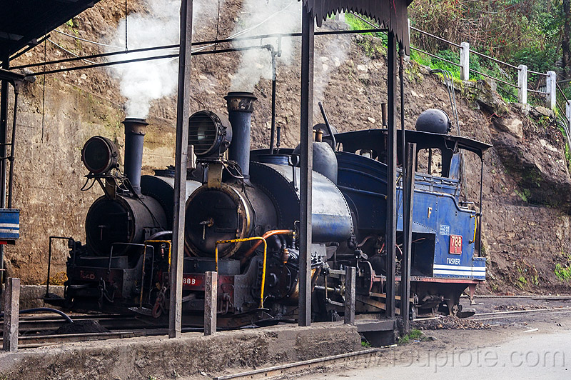 steam train engines - darjeeling (india), 782 mountaineer, 788 tusker, darjeeling himalayan railway, darjeeling toy train, narrow gauge, railroad, smoke, smoking, steam engine, steam locomotive, steam train engine, train depot, train yard