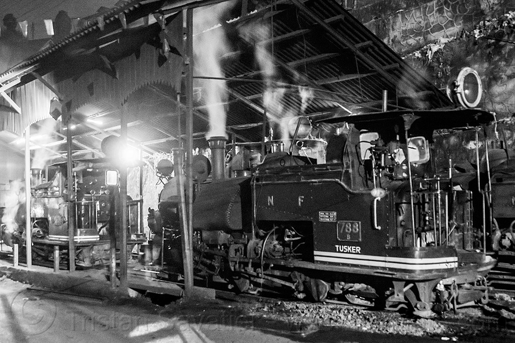 steam train locomotives - darjeeling (india), 788 tusker, darjeeling himalayan railway, darjeeling toy train, india, narrow gauge, night, railroad, smoke, smoking, steam engine, steam locomotive, steam train engine, train depot, train yard