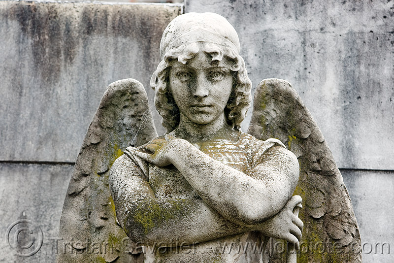 angel statue, angel wings, buenos aires, crossed arms, grave, graveyard, recoleta cemetery, sculpture, statue, stone, tomb