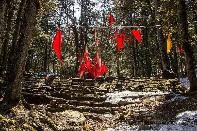 stone steps and red flags at hindu shrine in forest (india), bells, forest, hinduism, mountains, red flags, shrine, snow, stairs, steps