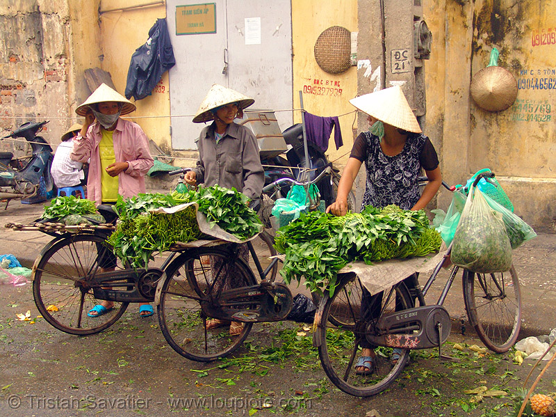 street vendors with bicycles - produce market - vietnam, bicycles, bikes, farmers market, hanoi, merchant, street market, street vendors, three, vendor