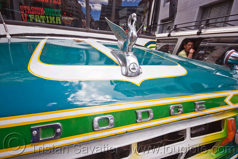 swan chrome hood ornament - dodge, bus, chrome, dodge, hood ornament, la paz, lorry, street, swan, truck
