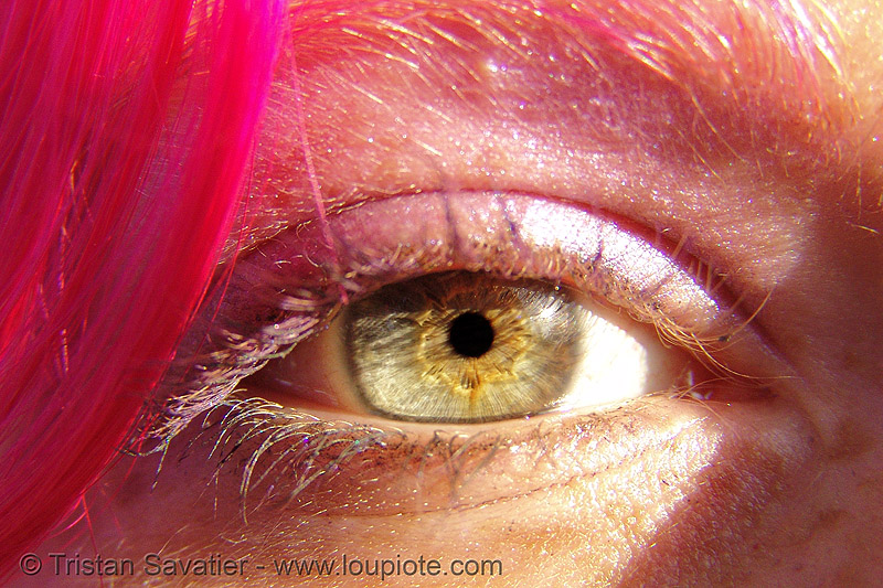 tasha's eye, close up, eye color, eyelashes, iris, natasha, woman