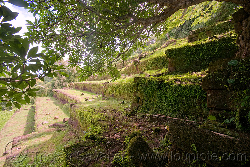 terraces and stair - wat phu champasak (laos), hindu temple, hinduism, khmer temple, ruins, stairs, stone stairs