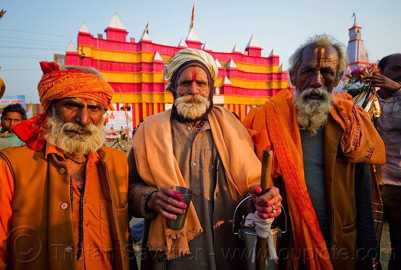 three old hindu pilgrims - kumbh mela 2013 (india), ashram, bhagwa, hindu pilgrimage, hinduism, india, maha kumbh mela, old men, pilgrims, saffron color, tilak, white beard