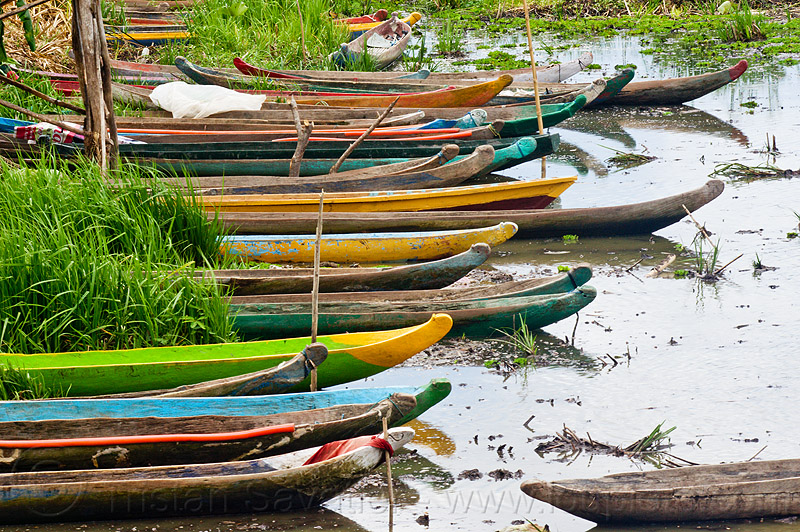 traditional indonesian canoes in tidal marsh, boats, colored, flores, many, mooring, painted, sumbawa, water