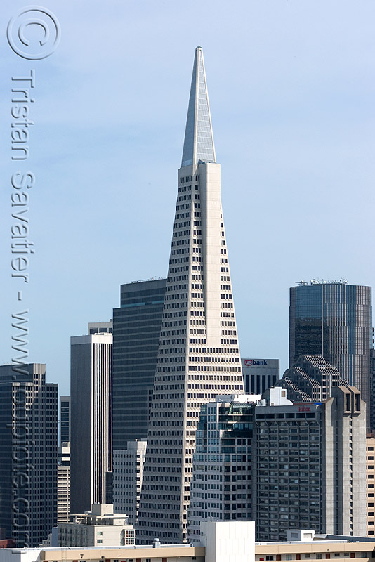 transamerica pyramid - skyline (san francisco), architecture, buildings, high-rises, san francisco skyline, skyscrapers, transamerica building, transamerica pyramid