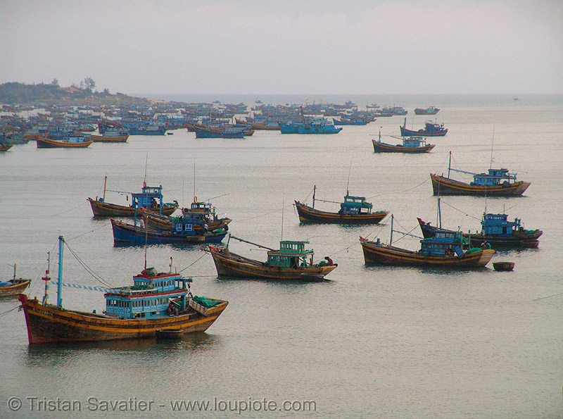 trawlers - moored fishing boats - vietnam, fishing boats, fishing trawlers, mooring, mui ne, sea