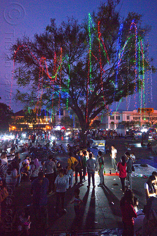 tree with color light strings - fatahillah square at night, christmas lights, color lights, eid ul-fitr, fatahillah square, jakarta, java, light garlands, light strings, nighr, night, street vendors, taman fatahillah, tree