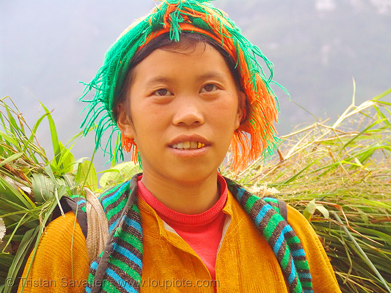 tribe girl carrying grass - vietnam, child, gold teeth, hill tribes, indigenous, kid, ma pi leng, ma pi leng pass, mã pí lèng, mã pí lèng pass, people, woman