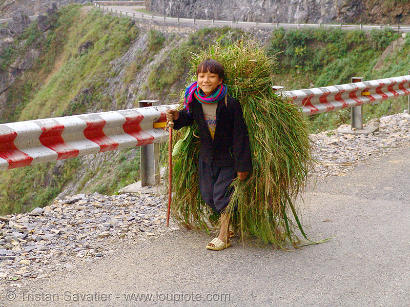 tribe kid carrying grass vietnam. Black Bedroom Furniture Sets. Home Design Ideas