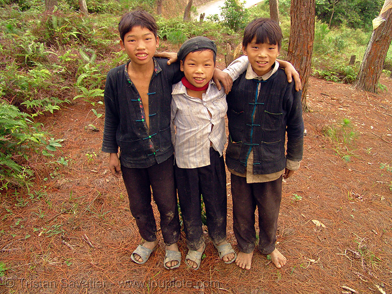 tribe kids - vietnam, children, hill tribes, indigenous, people, three