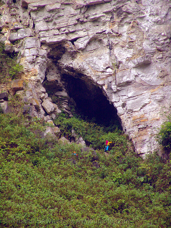 tribe woman gathering plants near natural cave - vietnam, cave mouth, caving, natural cave, spelunking