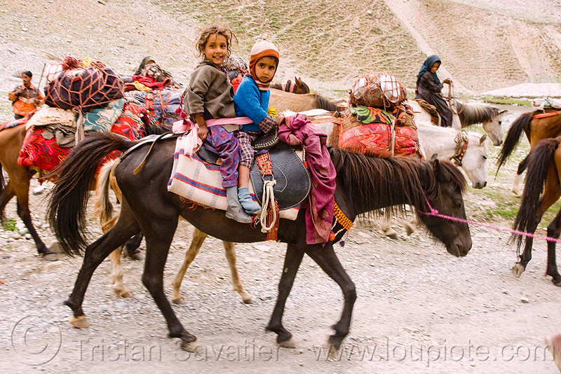 two kids riding a horse - nomads with horses - leh to srinagar road - kashmir, caravan, children, gujjars, horse riding, horseback riding, kashmiri, kashmiri gujjars, mountains, muslim, pack animal, pack horses, people, zoji, zoji la, zoji pass, zojila pass