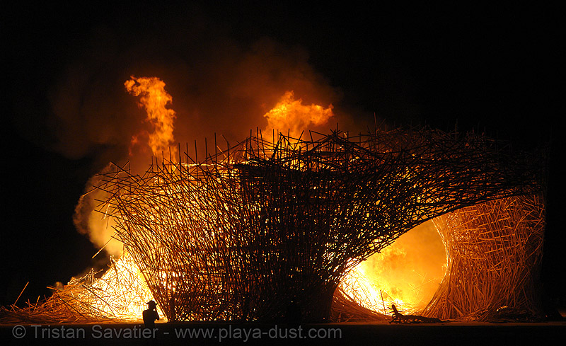 uchronia burning - burning-man 2006, art installation, belgian waffle, burning man, fire, flames, night, uchronia