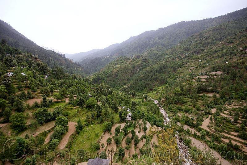 valley north of jalori pass (india), agriculture, india, mountains, river, terrace farming, terraced fields, trees, v-shaped valley