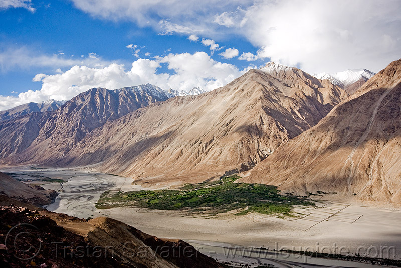 view of nubra valley - ladakh (india), india, ladakh, mountains, nubra valley, river bed, satti