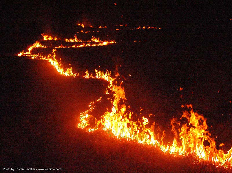wild fire at night, burning, flame, grass fire, ประเทศไทย