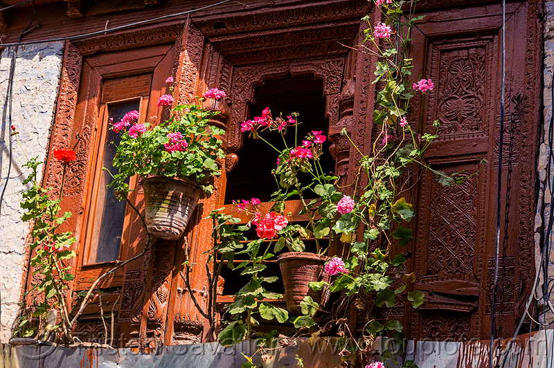 window with flowers - intricate wood carving panels (india), almora, carved, flower pots, flowers, house, low relief, window, wood carving, wooden
