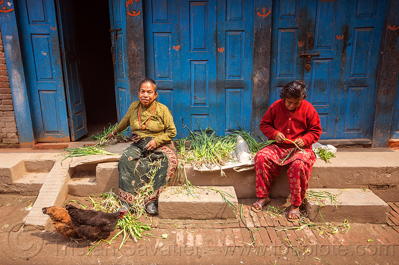 women preparing food in front of their house (nepal), bhaktapur, blue, blue door, chickens, doors, people, sitting, street