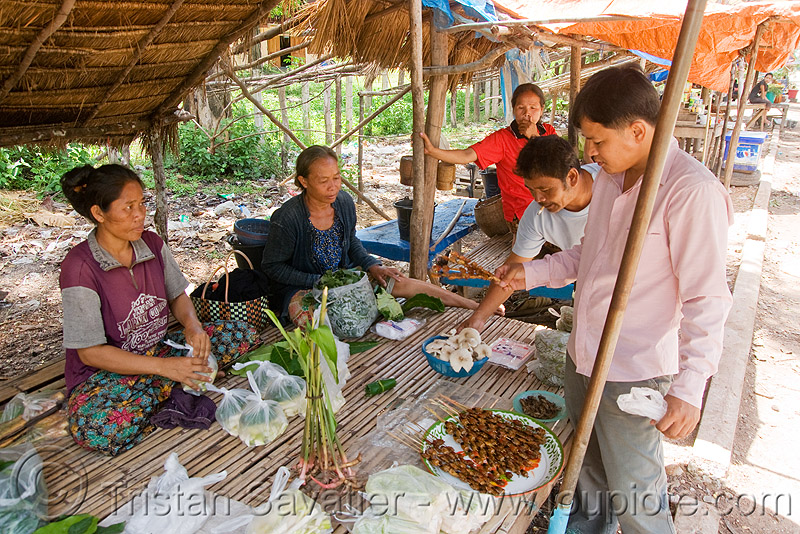 women selling insect snacks (laos), asian woman, bugs, eating bugs, eating insects, edible bugs, edible insects, entomophagy, food, man, market, people