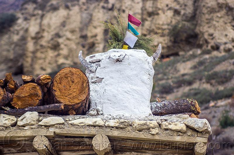 yak skull - sacrifice offering on house roof  (nepal), annapurnas, horns, house, kali gandaki valley, mountains, offerings, roof, sacrifice, skeleton, yak skull
