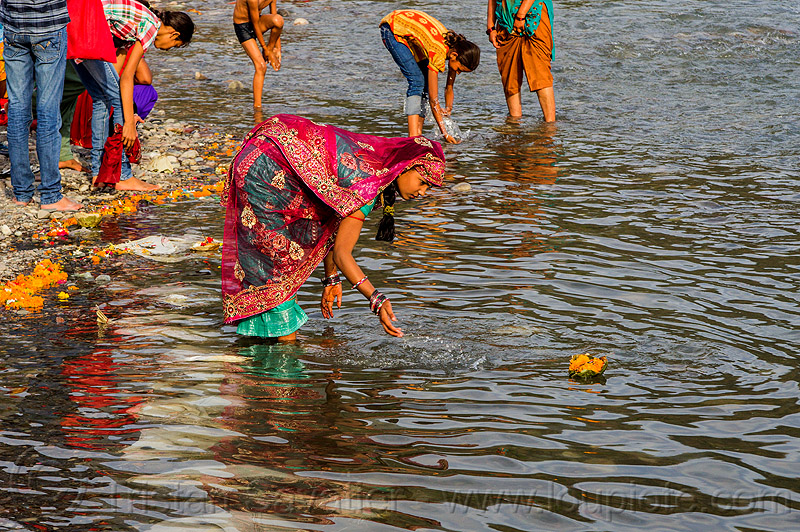 young indian woman making an offering on the ganges river - triveni ghat (india), floating, ganga river, ganges river, ghats, hinduism, holy bath, holy dip, offering, rishikesh, river bathing, saree, sari, triveni ghat, water, woman