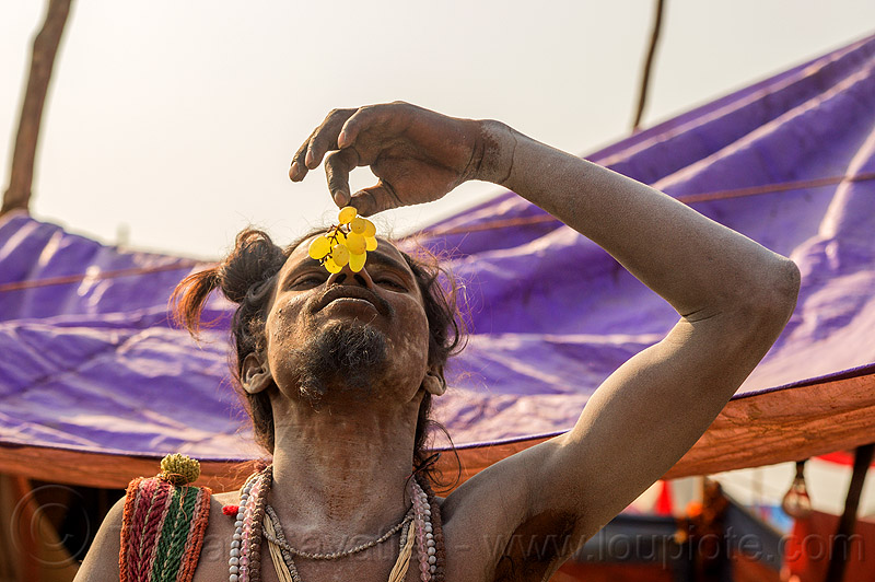young sadhu eating grape (india), baba, beard, eating, fruit, grape, hindu pilgrimage, hinduism, india, maha kumbh mela, man, naga babas, naga sadhus, sadhu