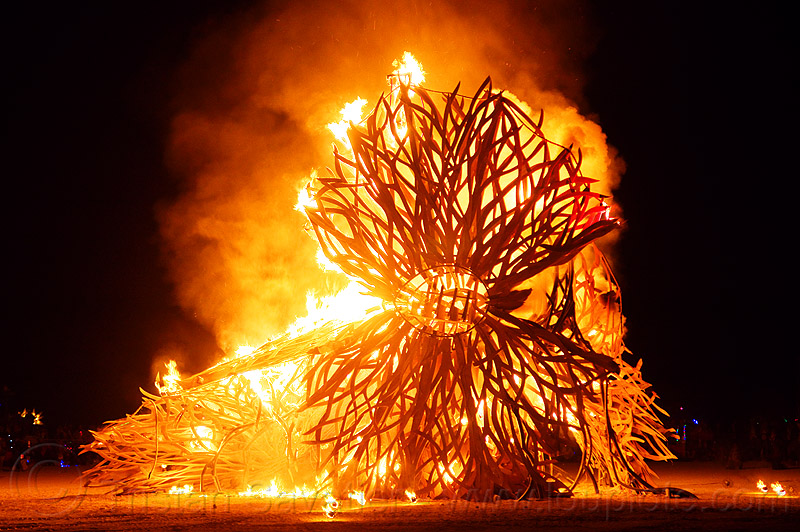 zoa - burning man 2012, fire, flames, flux fundation, night