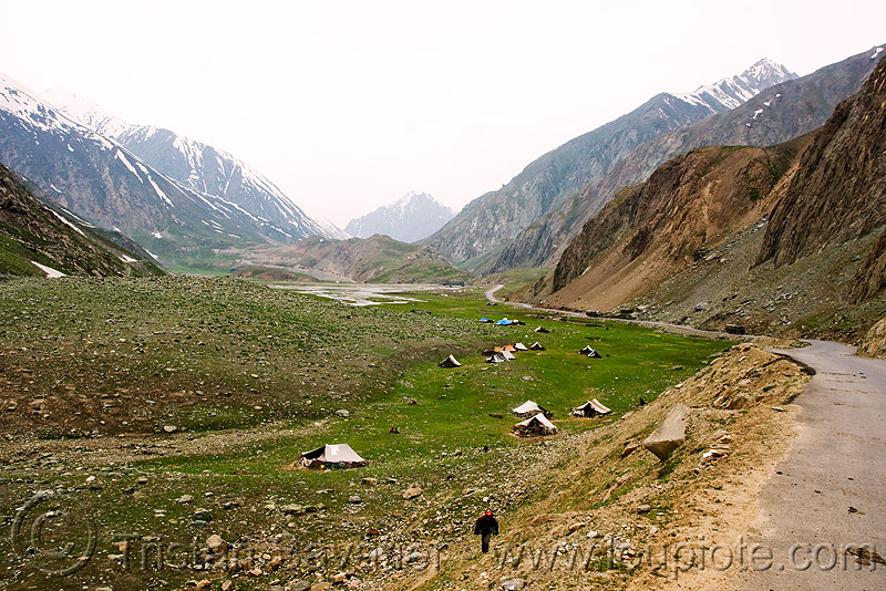 zojila pass - drass valley - leh to srinagar road - kashmir, camping, dras valley, drass valley, encampment, grass field, india, kashmir, kashmiri gujjars, medow, mountains, muslim, nomads, road, tents, zoji la, zoji pass, zojila pass