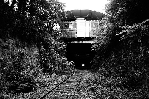 abandoned underground railway (paris, france) - petite ceinture, paris, railroad tracks, railway tracks, railway tunnel, trespassing