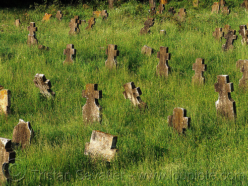 abandoned war cemetery, belogradchik, christian orthodox cemetery, cross, crosses, decay, grass, graves, graveyard, green, military cemetery, religion, tombstone, trespassing, urban exploration, българия