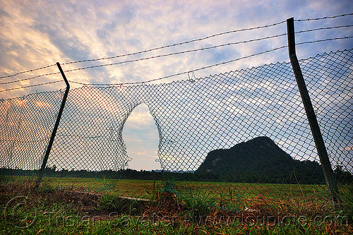 security breach, airport perimeter, barbwire, breach, evening, fence grid, gunung mulu national park, hole, mulu airport, poles, security