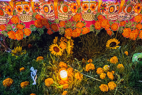 altar de muertos with marigold flowers and sugar skull decorations - dia de los muertos, altar de muertos, candle, day of the dead, dia de los muertos, grass, halloween, marigold, night, orange flowers, sugar skull drawing, sugar skull motifs, turf