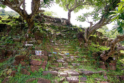 ancient stone stair - wat phu champasak (laos), hindu temple, hinduism, khmer temple, ruins, stone stairs, trees