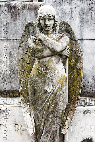 stone angel, angel wings, buenos aires, cemetery, crossed arms, grave, graveyard, recoleta, recoleta cemetery, sculpture, statue, tomb