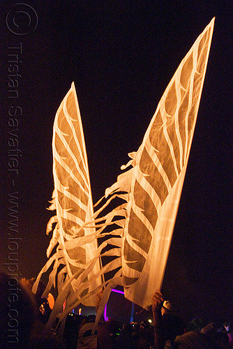 angel wings at night, angel wings, burning man, night
